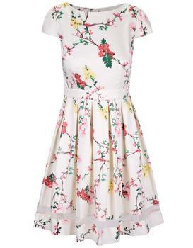 Cream floral dress with sheer stripe Dorothy Perkins