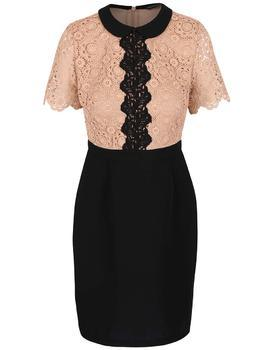 Brownish-black dress with a lace top on Dorothy Perkins