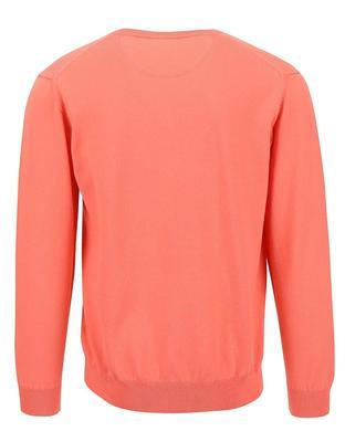 Coral men's sweater GANT - 2