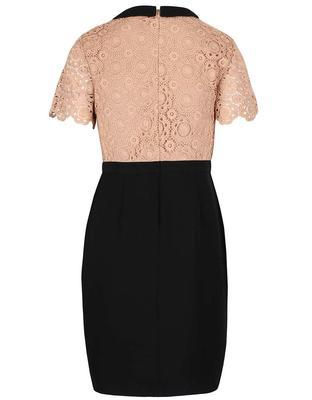 Brownish-black dress with a lace top on Dorothy Perkins - 2